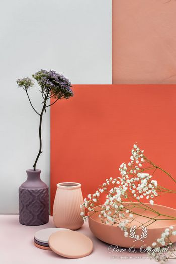 Article WONEN360 launch new spring summer 2019 colours