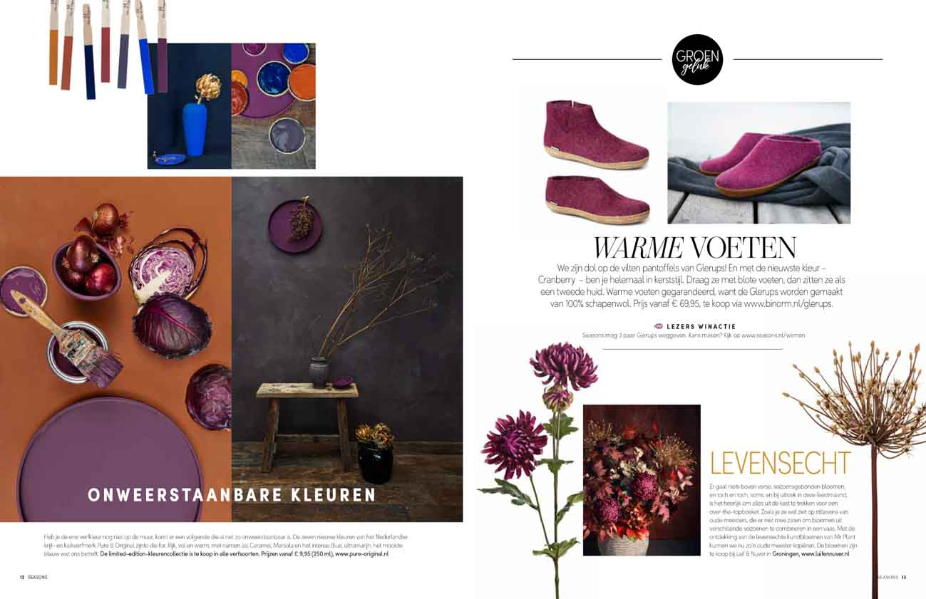 Article with Pure & Original autumn winter paints and purple flowers